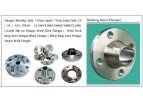 VIRAJ INDIA Stainless Flanges